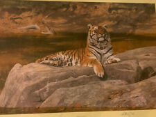 Tiger Print Anthony Gibbs 747/1500 Signed By Artist