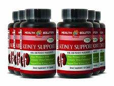 Dietary Supplement Kidney Health KIDNEY SUPPORT 700 6 Bottles 360 Capsules