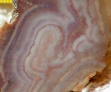 Arizona Burro Creek Purple Banded Agate 0.5 oz Lapidary heel slab (16 gms)