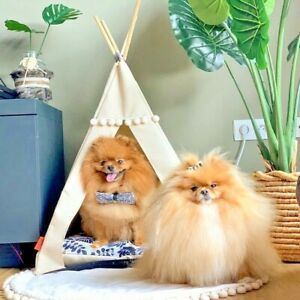Dog teepee - Golden leaves, dog tent including pillow*luxury dog house, dog bed