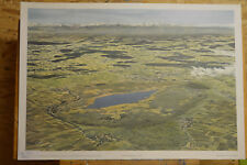 Sublime Tableau Mural Federsee Bad Buchau Biberach Moor Avifaune 92x64c ~1960