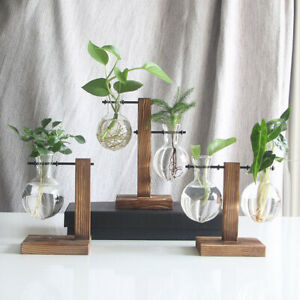 Desktop Glass Planter Bulb Vase Solid Wooden Stand Hydroponic Plant Contai Hot