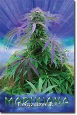DRUG POSTER Marijuana Legalize It
