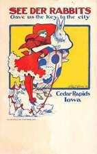 Cedara Rapids Iowa dressed bunny lady in dress baby bunnies antique pc ZD549489