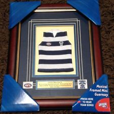 AFL Geelong Cats 34CM BY 28CM FRAMED FRAME JUMPER GUERNSEY PLAYS CLUB SONG ✔️