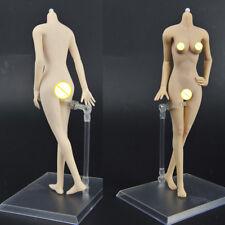 2 Sets 1/6 Weibliche Nahtlose Körper Puppenkörper Zubehör Set für 12