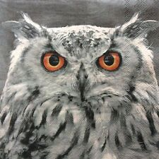 20 x owl paper napkins for decoupage or lunch, packet of 20 owl napkins.