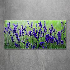 Glas-Bild Wandbilder Druck auf Glas 120x60 Deko Blumen & Pflanzen Lavendel