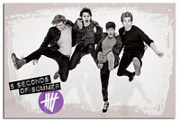 5Sos 5 Seconds Of Summer Jumping Poster New - Maxi Size 36 x 24 Inch