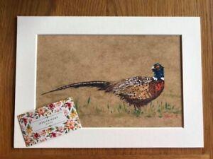 "Pheasant Acrylic Print Bird Painting Art Picture 9x7"""
