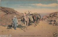 Afrika - CPA - Karawane der Nomade