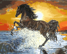 Paint By Numbers Kit Canvas 50*40cm 8176 Sunset Horse Freedom DIY Art Decor