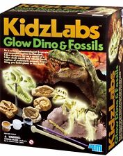 Glow Dino & Fossils science excavation kit by Kidz Lab 4M