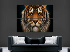 Tiger poster animal chat sabertooth sauvage mur grande image giant
