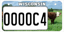 5x10 ATV / UTV license plate WI04