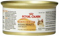 Royal Canin Canned Cat Food, Intense Beauty, Thin Slices in Gravy (Pack of 24