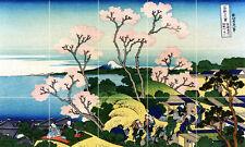 Art Cherry Blossoms Mural Ceramic Backsplash Bath Tile #2040
