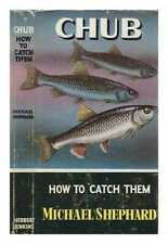 Chub - How to catch them