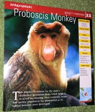 Endangered Animals Card - Mammal - Proboscis Monkey #33