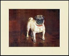 PUG NAMED CHAMPION DOG LOVELY LITTLE  PRINT MOUNTED READY TO FRAME