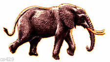 "4"" ELEPHANT JUNGLE SAFARI ANIMAL FABRIC APPLIQUE IRON ON"