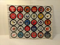 NHL Hockey Set 30 Pogs Puck Caps Campbells Chunky Soup Collectible Cards t2314