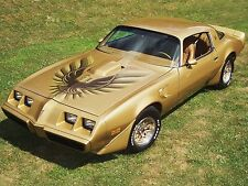 1979 PONTIAC TRANS AM POSTER | 24 x 36 INCH | GOLD, CLASSIC