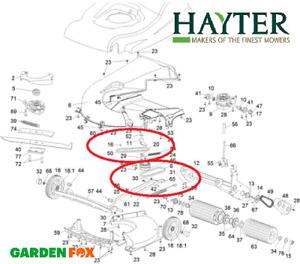 Genuine Hayter Harrier 56 560/1/3 J/H/F PAIR Drive BELTS 411024 772 1111254 O75M