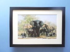 David Shepherd print 'Mud, Mud, Glorious Mud' Elephants FRAMED