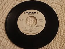 THE HIGH HOPES  NOW THAT LOVE HAS COME MY WAY/SAME PROMO PARKWAY 995 M-