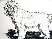 Gladys Emerson Cook 1962 Komondor Vintage Dog Art Print Matted