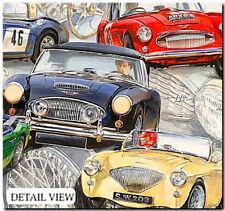 THE BIG HEALEYS - FINE ART PRINT  Austin Healey Classics 100/4 100/6 100M & 3000