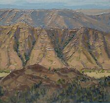 Original oil painting landscape canyons evening light pallet knife impressionism