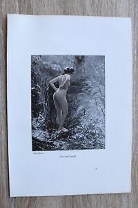 Jugendstil Kunst Blatt 1905 Erotik Frau DER ERSTE SCHRITT Akt Nude Erotic Risque