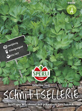 "Sperli  Sellerie "" Gewone Snij "" Schnittsellerie Gewürzkraut Samen   84696"