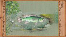 Indian Green Fish Painting Rare Handmade Aquatic Watercolor Miniature Marine Art