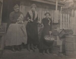 Woman Holds Cat Basket of Eggs Vintage RPPC Photo Postcard Barrel Crate Women