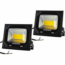 30W Outdoor LED Low Voltage Warm White Floodlight, 12V DC Security Light, IP66