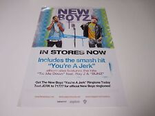 New Boyz Skinny Jeanz And A Mic 2 Sided Poster 2009Promotional  Poster 11X17 NEW