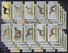 CHURCHMAN, RACING GREYHOUNDS, ORIGINAL SERIES OF 25 ISSUED IN 1934.
