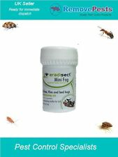 bedbug flea bed bugs  killer poison bomb treatment  dog cat fleas in the home E
