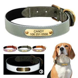 Collare Cuoio con Targhetta nome Personalizzato per Cane Cani Gatto Riflettente
