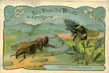 Image ancienne chromo insectes utiles à protéger le bourdon - le sphex