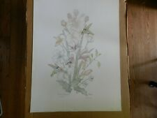 "FLORAL DYNASTY  By Pat Moran 25"" x 19"" signed #249 of 1500 lithograph"