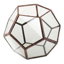 Pentagon Kugel Glas geometrische Terrarium Box Tabletop saftig Pflanze Pflanzer