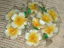12 X Floating Candles for Pool Asia SPA Signature Flower Frangipani Aromatherapy