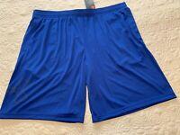 Under Armour Men' Heat Gear Loose Fit Royal Blue Shorts Size XXL - NWT
