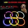 LED Pet Dog Collar USB Rechargeable Flashing Lights Waterproof Night Safety Belt