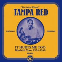 TAMPA RED-IT HURTS ME TOO : BLUEBIRD YEARS 1934-1940-JAPAN MINI LP CD C94