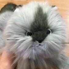 "Ty Classic Plush - Smokey the Cat (17"") 20th Anniversary Edition Himalayan Gray"